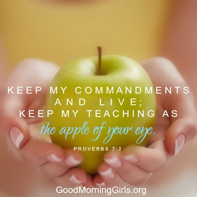 Keep my commandments and live; keep my teaching as the apple of your eye. Proverbs 7:2