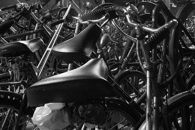 Nine million bicycles