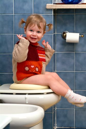 Lucie's List reviews the best potty chairs, including the best portable potty, the Baby Bjorn Potty, the Bumbo potty seat and more.