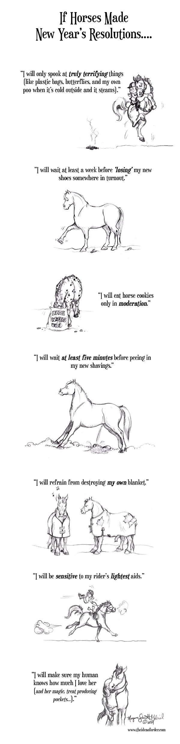 If Horses made New Years Resolutions! #horses #comic #funny