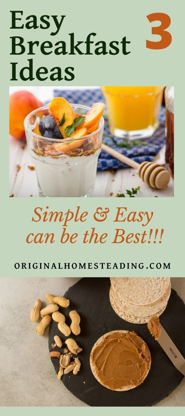 3 Simple Healthy Breakfast Ideas To Make You Feel Like A Health Guru Healthy Breakfast Easy Breakfast Nutritious Breakfast