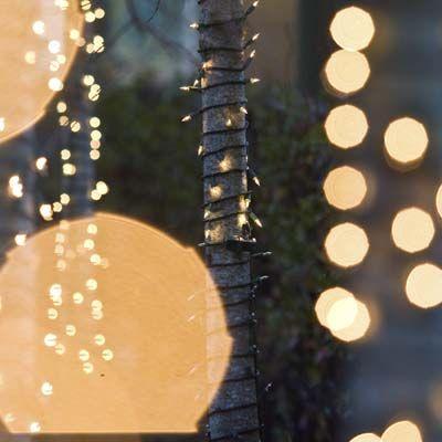 Garden String Lights Pinterest : awesome Make Magic: Put String Lights In The Garden Decor & Design Pinterest Gardens ...