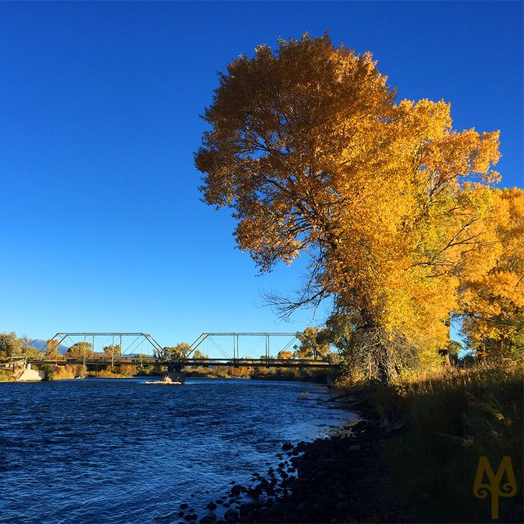 "Blog Post: 'Fall On The Madison""...videos, photos, and general love for the world famous Madison River in all its Fall glory!"