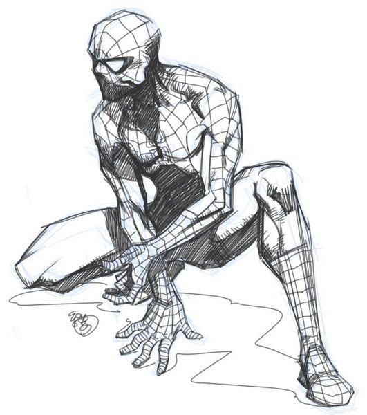 best 20  spider drawing ideas on pinterest