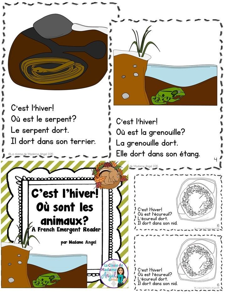 Les animaux en hiver!  Great French book about Hibernation!  Simple text for emergent readers.