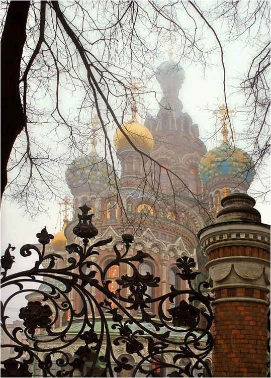 Saint Petersburg, Russia. Church on the Spilled Blood. I was so amazed by this iron fence.