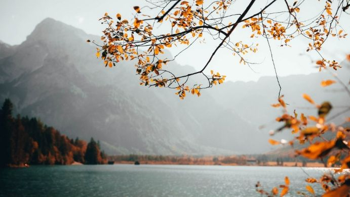 Customize 500 Zoom Background Design Templates Postermywall Nature Images Background Relaxing Music