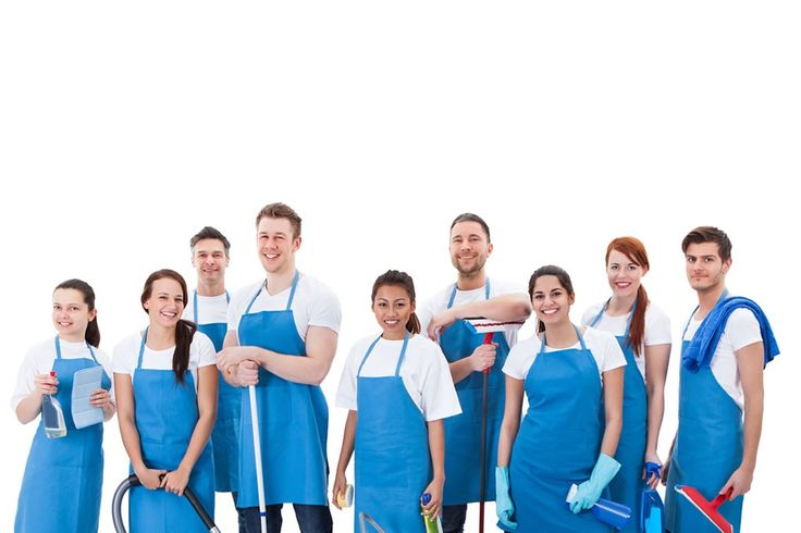 We offer a complete solution for your home or business from rugs, upholstery, mattress cleaning and sanitising, professional window cleaning, duct cleaning and so much more. #CarpetCleaning  http://www.myomcleaningservices.com.au/carpet-steam-end-of-lease-bentleigh/