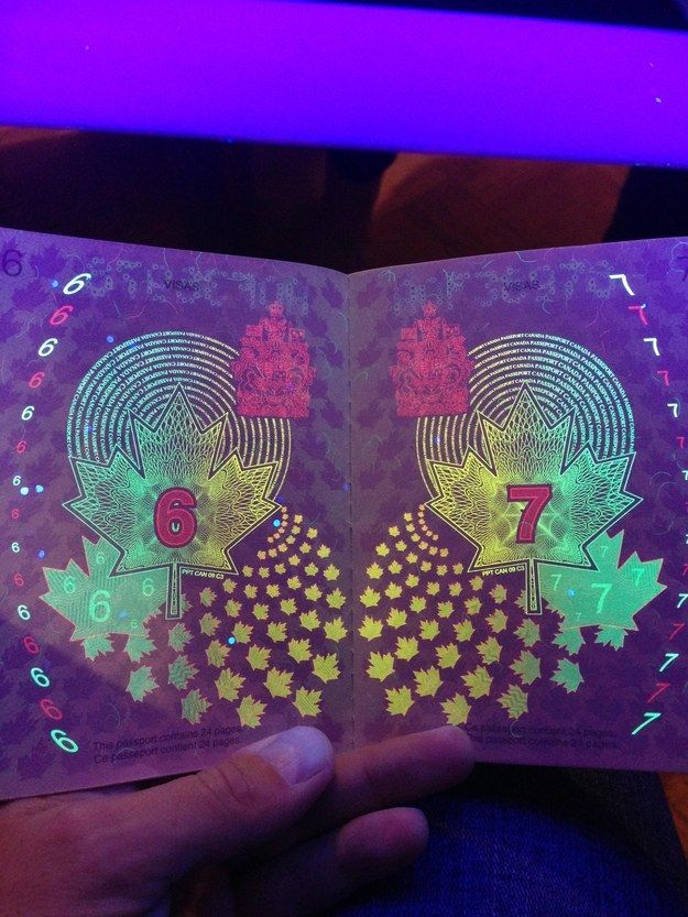 Bet you didn't know this: the Canadian passport has hidden artwork that's only visible under UV black light. Here's a sample page from an older version of the passport; the majority of the artwork is only visible under UV light.