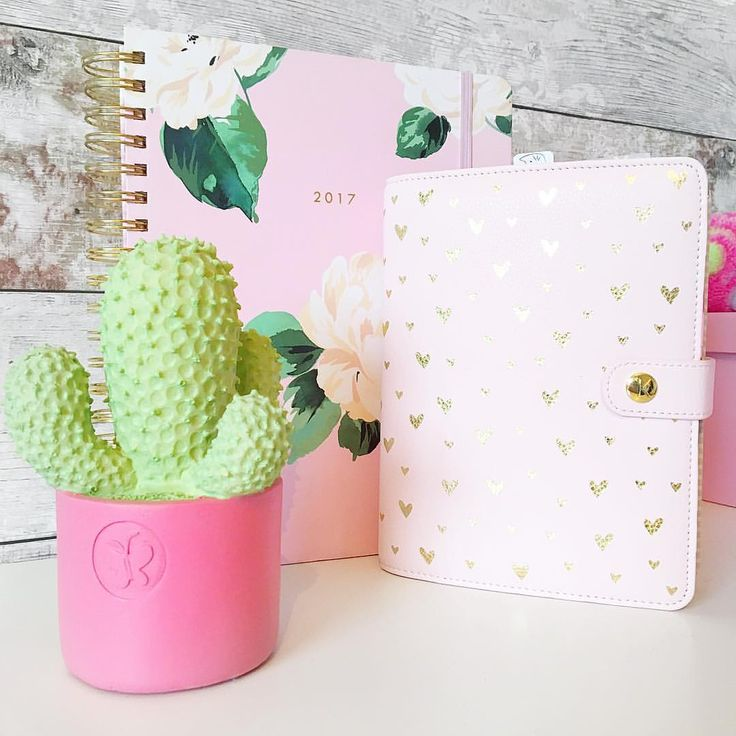 "312 Likes, 20 Comments - Mrs Planner Addict (@mrsplanneraddict) on Instagram: ""Happy Sunday!! 🎉🎉. Hope you all have a fab day! 🌵💖"""