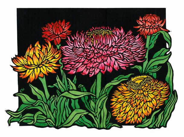 Strawflowers Design - Limited Edition Handpainted Linocuts by Lynette Weir
