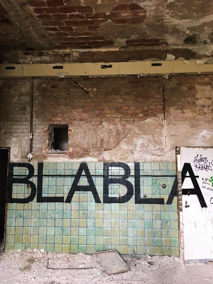Aufregender Instawalk im Fläming: Beelitz Heilstätten & Baumkronenpfad | Pinspiration