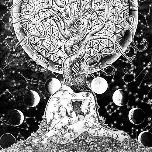 Di che segno è il tuo uomo ideale? Scoprilo qui http://www.secretastrology.it/curiosita-sui-segni/di-che-segno-e-il-tuo-uomo-ideale/ #astrologia #segnizodiacali #segnozodiacale #amore #zodiaco #ariete #toro #gemelli #cancro #leone #vergine #bilancia #scorpione #sagittario #capricorno #pesci #oroscopo #astrology #horoscope #sunsign #aries #taurus #gemini #leo #cancer #scorpio #capricorn #pisces #aquarius #sagittarius #love