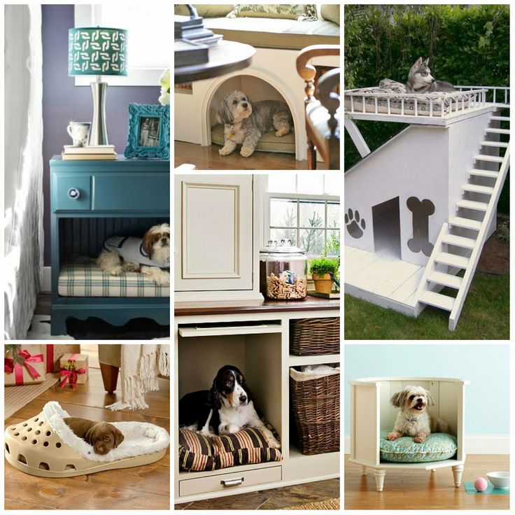 8 best dog bed ideas images on pinterest bed ideas dog for Kitty corner bed ideas