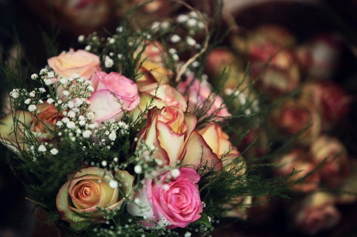 20 February 2016 - Pieter & Izel Hattingh - Beautiful flowers