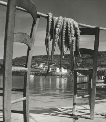 Herbert LIST :: Octopus - Korfu, 1938