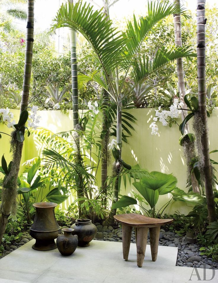 Image result for progress of a tropical exotic garden
