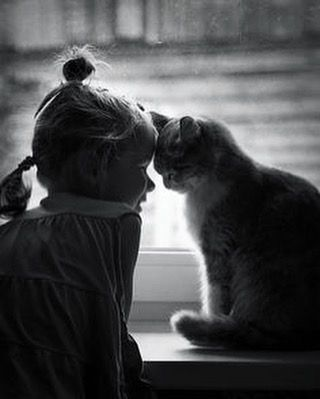 #goodmorning #pet #love #lovely #cat #baby #goodnight #cute #sleep #bed #adorable #play #cry #smile #rio #grass #kiss #kids #sweet #summer  welcome to download our APP: Pinkmom
