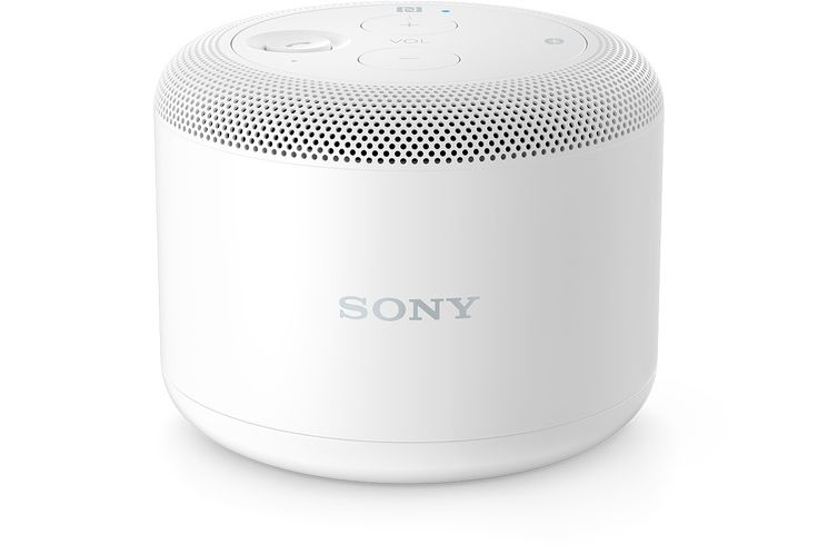 Bluetooth speaker, he says he's looked at a Sony and a Bose, preferably in the $100-ish range. I think he would rather have a nicer one that would have better quality sound.