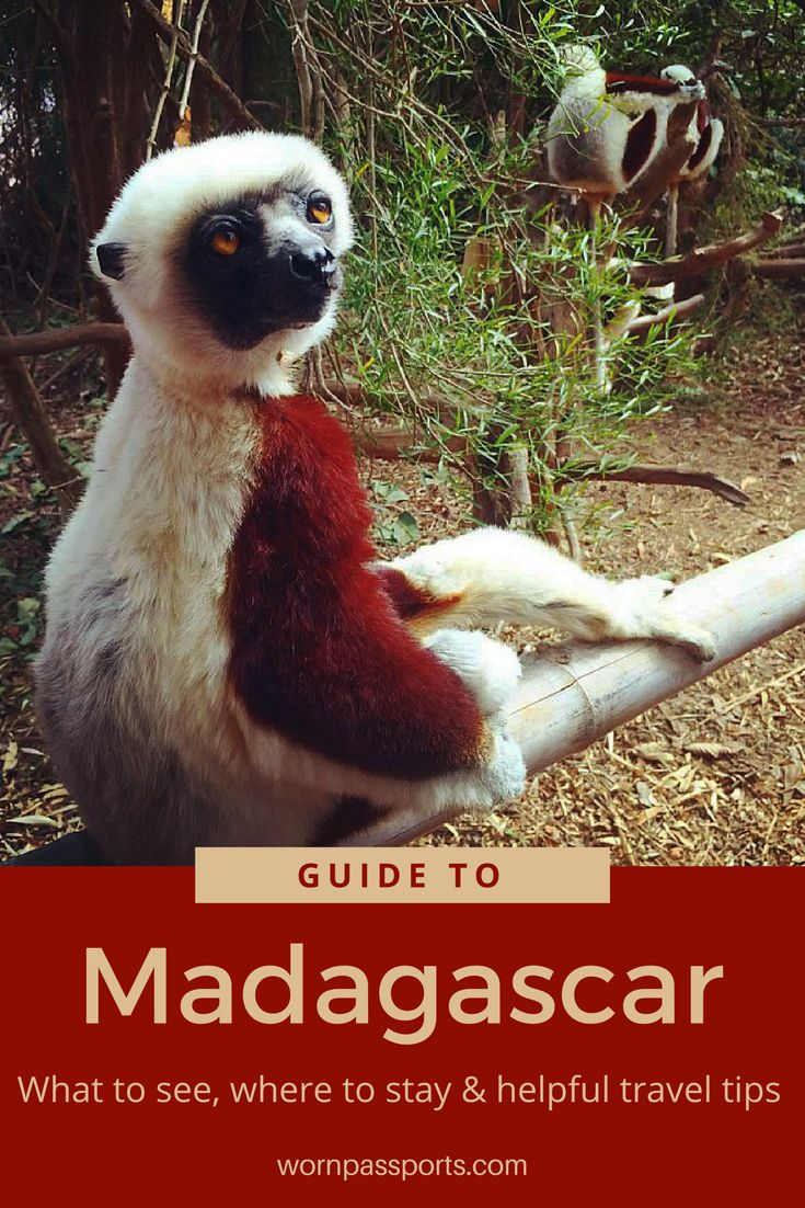 Travel guide to visit Antananarivo, Madagascar: Sample itinerary, advice, and recommendations from real travelers. Visit Lemur's Park, Perinet Reserve in the Andasibe-Mantadia National Park, City of Antananarivo, & learn about the culture of this unique country. | wornpassports.com