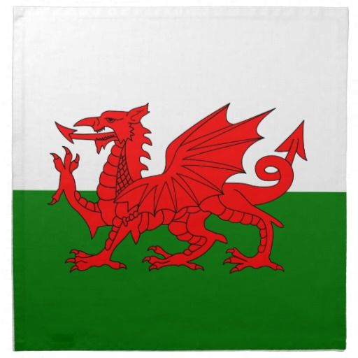 Wales flag napkin - these are super for restaurants that serve intercontinental foods - for example Rarebit, then decorate plates etc to match giving the meal more authenticity.