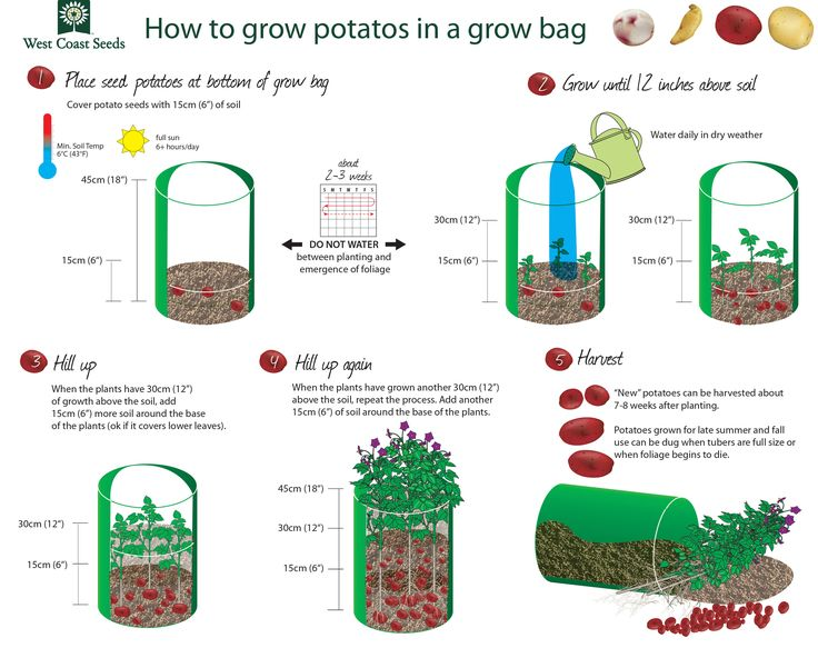 Some are for baking, some are for salads, some for French fries. You should try them all! Follow this handy How to Grow Potatoes Guide and grow food.!