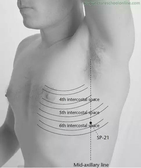 Bien connu 325 best Acupressure images on Pinterest | Acupuncture points  QP49