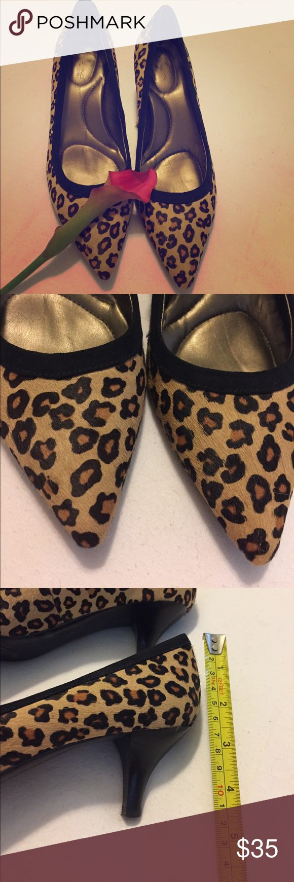 Calf hair leopard print pumps Super comfortable and extremely classic style!  Calf hair (not sure if real or not) with a traditional leopard print pattern trimmed in black suede.  Very gently worn and in beautiful condition.  Extra padding in insoles give the comfort on top of style. Bandolino Shoes Heels