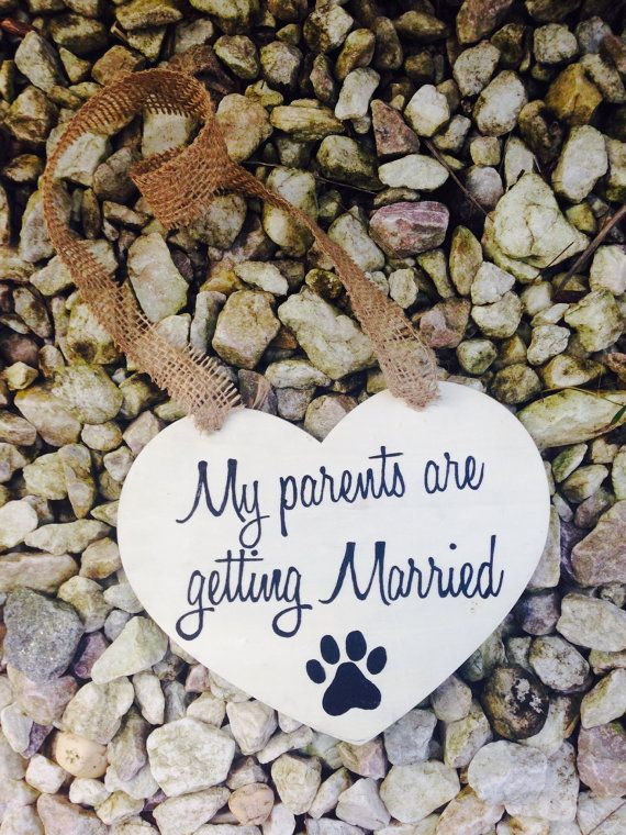 My Parents Are Getting Married - Engagement Photo Sign for Dogs - With Paw Print & Wedding Date on back on Etsy, $15.50