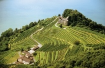 Wine roads, Mendrissiotto