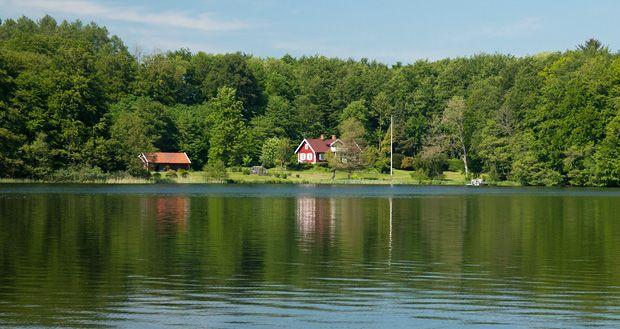 Gyllebosjön | Som en av få sjöar på Österlen är Gyllebosjön välbesökt om sommaren. I natursköna omgivningar och som guldram till Gyllebo slott erbjuder sjön både bad och fiske för den som hellre gör det i sötvatten.