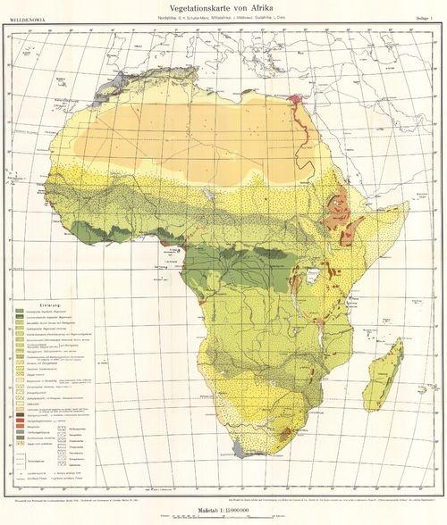 Vegetation map of Africa 1963