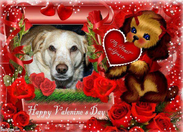 Valentines Puppy in Roses,Kids