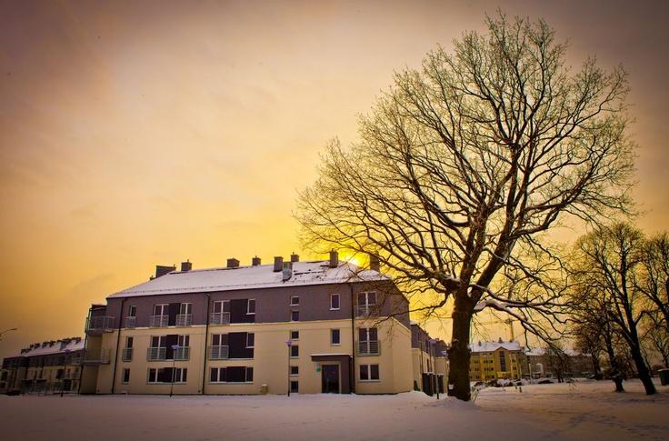 #Male_Blonia_Estate #Szczecin