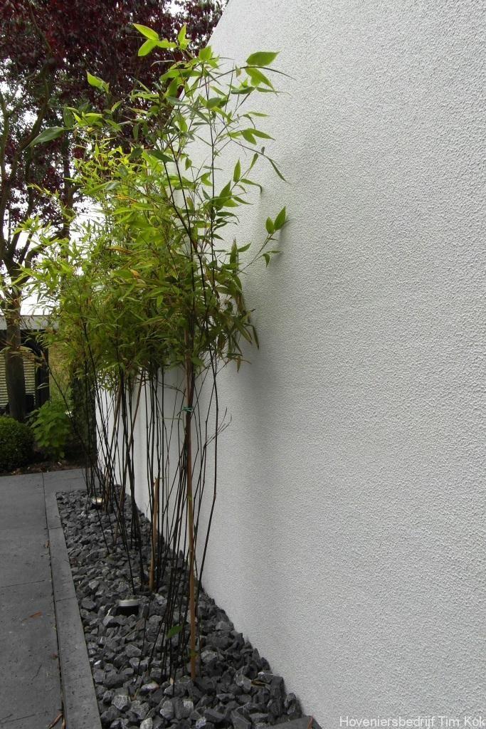 Heerlijk buitenleven, tuin te 's-Gravendeel, bamboehaag-gestuucte-muur-stuuk-muur-gladde-tuinmuur-muur-stuuken-split-gravel-grind-sierkeien-hoevenier-tim-kok