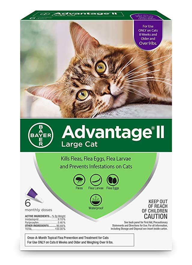 Bayer Advantage Ii For Large Cats Over 9 Lbs 6 Pack With Images Cat Fleas Flea Prevention For Cats Flea Treatment