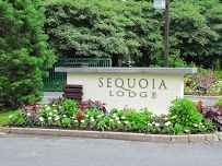 disney sequoia lodge hotel - Google zoeken