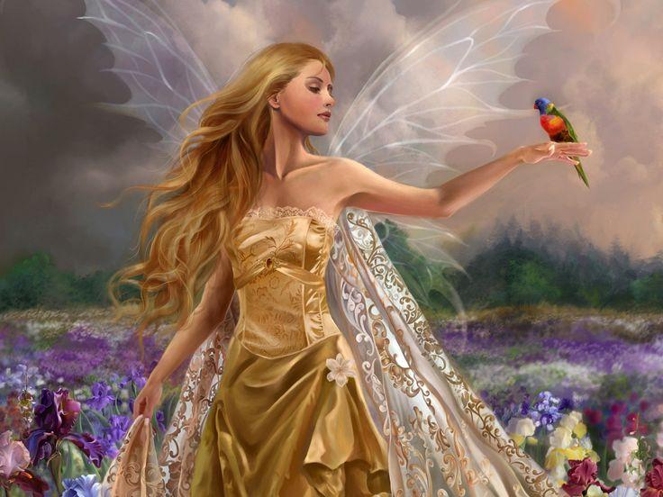 女の子の画像, 妖精の壁紙, 花ベクトル, 鳥の写真, 羽の背景, フィールド材料