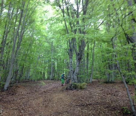 Το πήλιο είναι ένας παράδεισος για τους λάτρεις της ορεινής ποδηλασίας