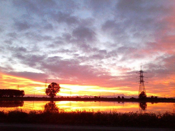 #Risaie al tramonto. Pic: Paola Cairati #Lomellina #riso #natura #tramonti