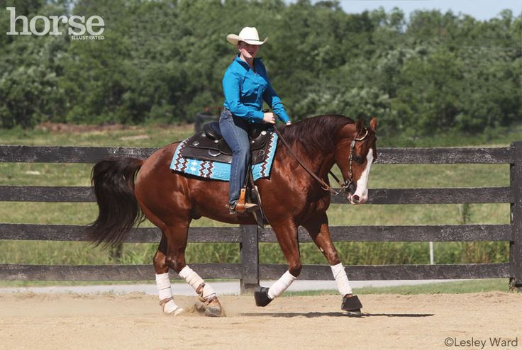Exercises and techniques to be a better rider for your western horse.