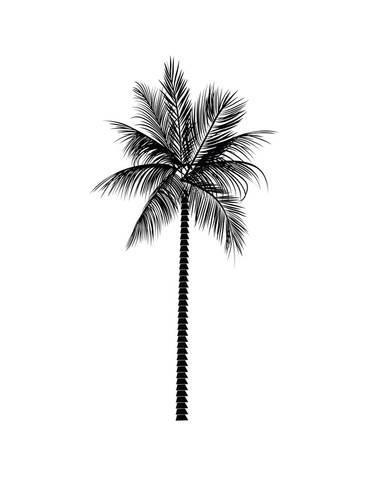 Black PalmBy Jetty Printables   blackWhite   Stiker