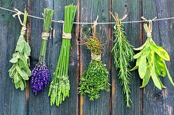 What herbs to use in making Sage and Smudge - What is Smudging - How to Smudge