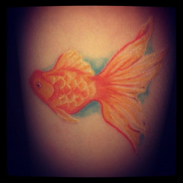 """My first pet was a goldfish named Pip, who I completely adored. To me this symbolises the love I have for all creatures and to always stay true to my nature.  Done by the talented Sophie Butcher at Love & Hate Tattoo's - Norwich. ""    Love symbolic tattoos like this: colorful and simple."
