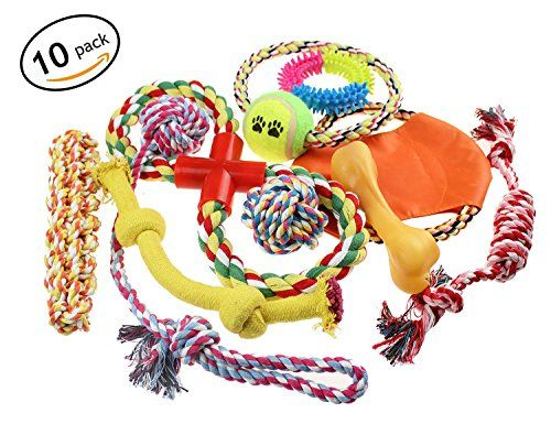 Lobeve Dog toys 10 Pack Gift Set Variety Pet Dogs Toy Set for Medium to Small Doggie