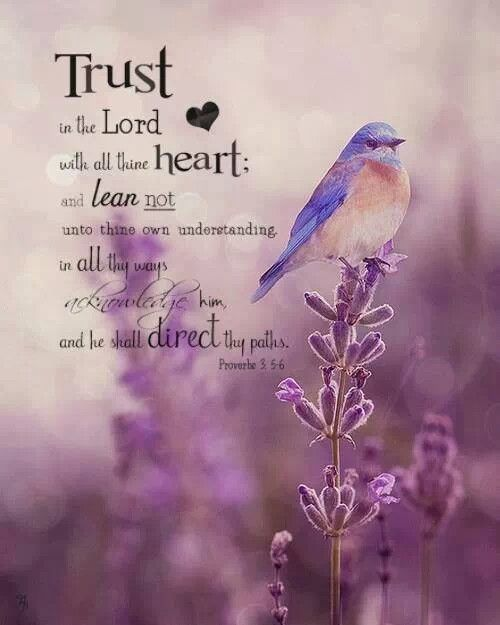 Image result for flower graphics with scriptures