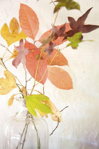 flower arranging by Rinne Allen