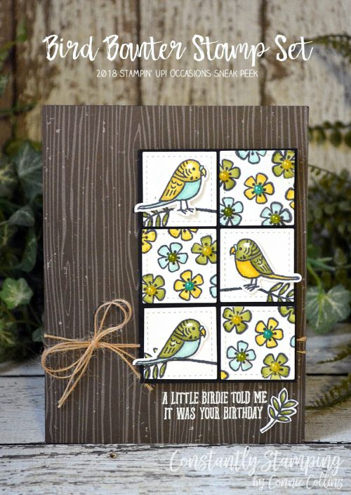 Bird Banter stamp set by Stampin' Up! Card designed by Connie Collins at www.ConstantlyStamping.com