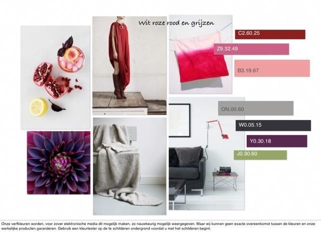 C-More | Prognose + trends | Interieur ontwerp + Concept | advies| ontwerp | cursus | workshops: Wit roze rood en grijs | kleurcollage