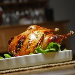 Honey-Lemon Roast Pheasant – The Foodee Project